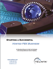 Download free white paper: How to Build a Profitable VoIP Business