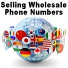 Sell wholesale DIDs and Toll-Free phone numbers to ITSPs and businesses: cloud-based softswitch and billing.