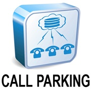 Offer a full portfolio of Hosted PBX features to your customers: Telinta's Softswitch and Billing